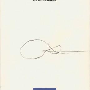 Reseña de en minúscula, de Pilar Rubio Montaner