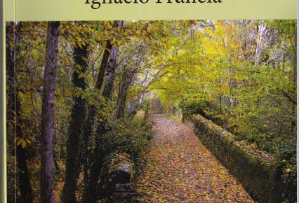 La curva del camino, de Ignacio Francia